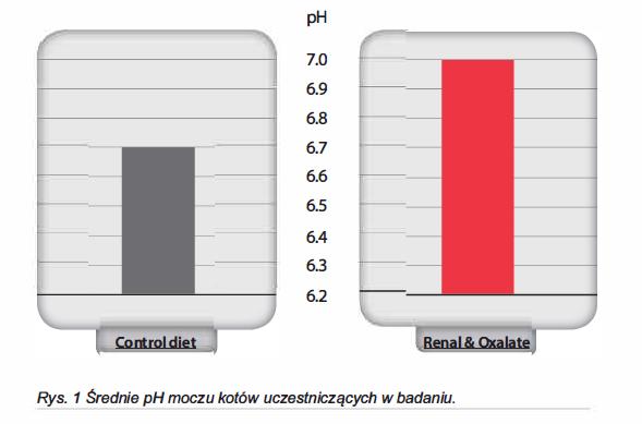 Wykres z badania